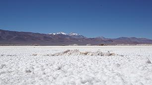 Salzsee- Salar de Maricunga auf über 4000m Höhe