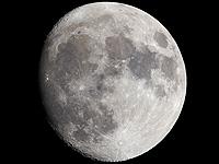 Mond TLP