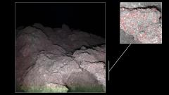 Ryugu at night – a 'cauliflower rock' with bright minerals