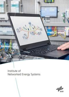 Preview Institute of Networkws Energy Systems
