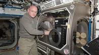 Astronaut Scott Kelly arbeitet im an der CCF%2dHardware