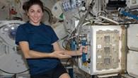 Installation der MDS%2dAnlage auf der ISS