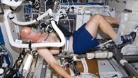 THERMO auf der ISS