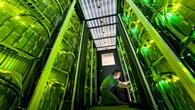DLR%2dStandort Braunschweig %2d Institut für Aerodynamik und Strömungstechnik