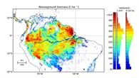 Biomasse%2dKarte: Amazonas Regenwald