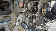 Halbzeit bei ISS-Experiment: Neue Strömungseffekte in Schwerelosigkeit entdeckt