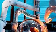 MIRO - der DLR-Leichtbauroboter für die minimalinvasive Chirurgie