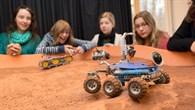 Legoroboter in der Marslandschaft