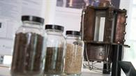 Energie für die Zukunft %2d aus Biomasse