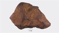 Der Cloppenburg-Meteorit