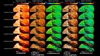 Gemessene und modellierte Oberflächentemperaturen des Kometen 67P