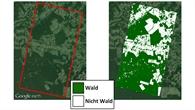 Vergleich: Abholzung im Amazonas