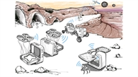 ARCHES (Autonomous Robotic Networks to Help Modern Societies)