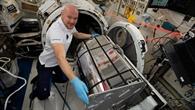 DESIS: Hyperspektrales Erdbeobachtungsinstrument sendet erste Bilder