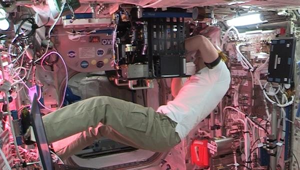 Installation des Experiments im Columbus%2dModul der ISS