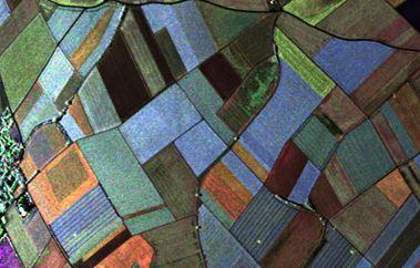 A fully polarimetric radar image over agricultural fields