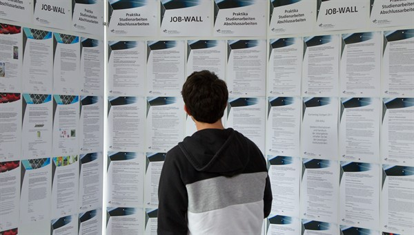 Plenty of exciting jobs for junior scientists