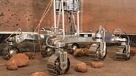 Rover%2dTestbett