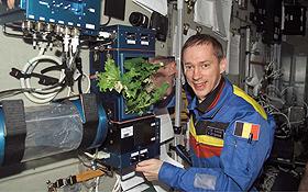 Ein Kosmonaut prüft den Wachstum eines Kopfsalates. Bild: NASA