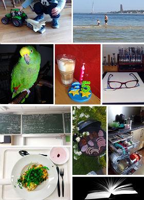 """Hier einige der fotografischen """"Alltags-Schnipsel"""", die uns inzwischen zugeschickt wurden."""