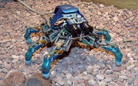 Dieser kleine Roboter läuft auf sechs Beinen. Er ist die Vorstufe für künftige Laufroboter zur Erforschung anderer Planeten. Bild: DLR