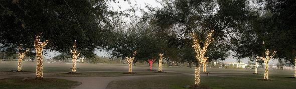 Diese Bäume erinnern an die verstorbenen Astronauten. Nur der Baum von Pete Conrad wird in rotes Licht getaucht. Bild: NASA