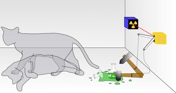 """Skizze zum Gedanken-Experiment """"Schrödingers Katze"""". Bild: Wikipedia/Dhatfield"""
