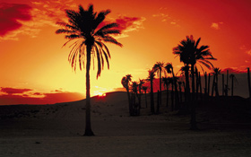 Auch in der Wüste wird es jeden Tag dunkel. Trotzdem kann dann weiter Solarstrom erzeugt werden: Die Wärme der Sonne wird am Tag gespeichert und in der Nacht genutzt. Bild: Photos.com