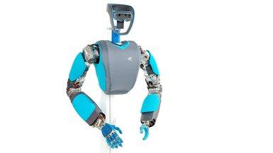 Anthropomorphic robot David