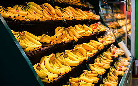 Wieso sehen Bananen am Ende ihrer langen Reise immer noch so frisch aus? Im DLR_School_Lab gibt´s die Antwort. Bild: CC0