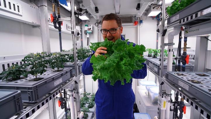 Unser DLR-Mitarbeiter Paul Zabel freut sich über den Salat, den er in einem speziellen Gewächshaus angebaut hat – und zwar in der Antarktis. Dort testete er bei einem Forschungsaufenthalt ein Verfahren, das auch Astronautinnen und Astronauten mit frischer Nahrung versorgen könnte. Ein ganz einfaches Experiment, mit dem du das so ähnlich auch zu Hause ausprobieren kannst, haben wir hier beschrieben. Bild: DLR